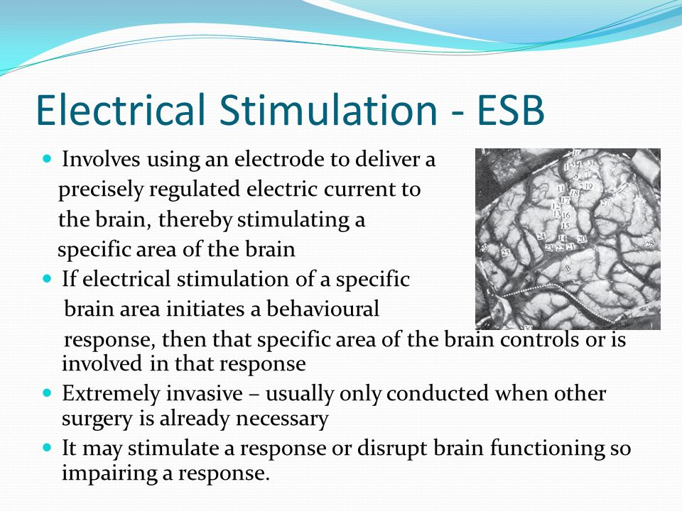 Electrical Stimulation - ESB Involves using an electrode to deliver a precisely regulated electric current to the brain, thereby stimulating a specific area of the brain If electrical stimulation of a specific brain area initiates a behavioural response, then that specific area of the brain controls or is involved in that response Extremely invasive – usually only conducted when other surgery is already necessary It may stimulate a response or disrupt brain functioning so impairing a response.