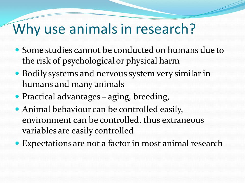 Why use animals in research.