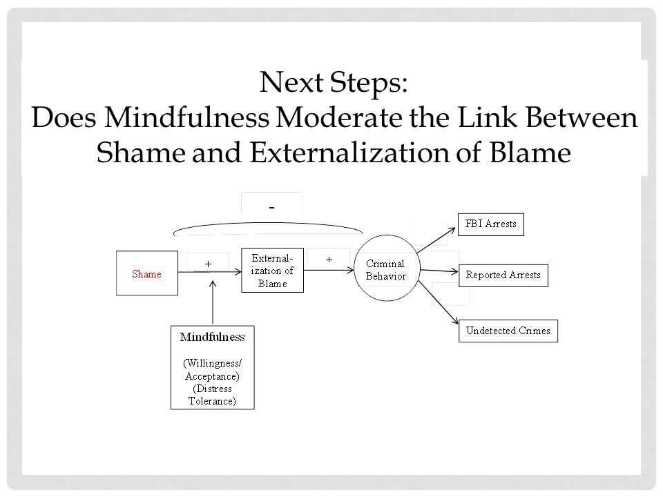 NEXT STEPS Does Mindfulness Moderate the Link Between Shame and Externalization of Blame.