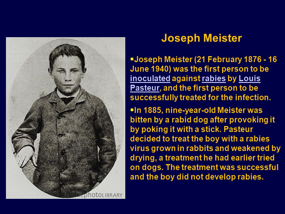  Joseph Meister (21 February 1876 - 16 June 1940) was the first person to be inoculated against rabies by Louis Pasteur, and the first person to be successfully treated for the infection.
