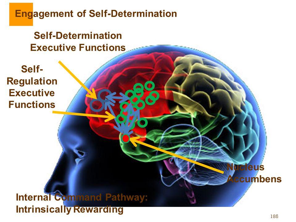 185 Nucleus Accumbens Self- Regulation Executive Functions Internal Command Pathway: Intrinsically Rewarding Engagement of Self-Determination Self-Det