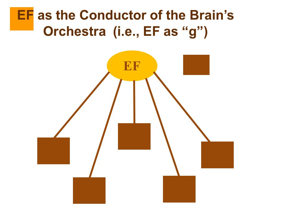 """EF EF as the Conductor of the Brain's Orchestra (i.e., EF as """"g"""")"""