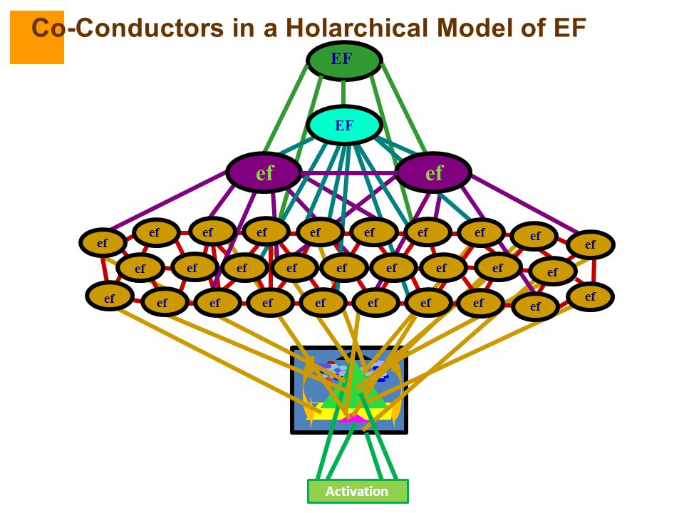 EF ef Activation ef Co-Conductors in a Holarchical Model of EF