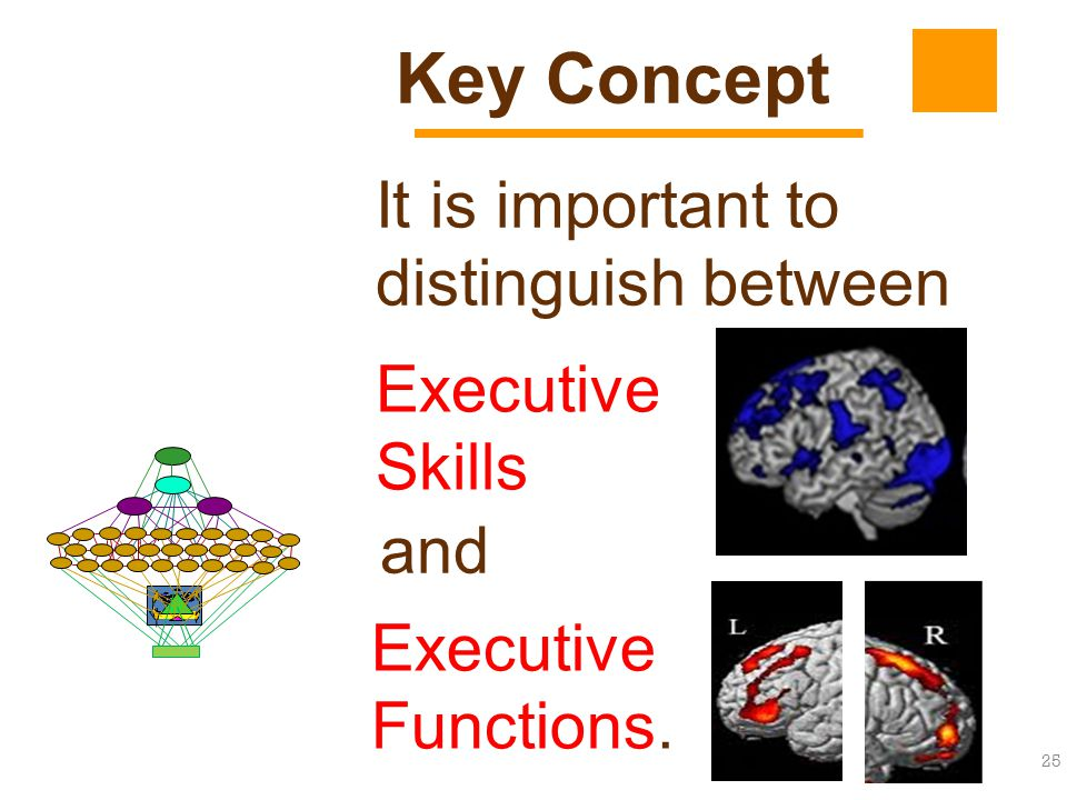 25 It is important to distinguish between Key Concept and Executive Skills Executive Functions.
