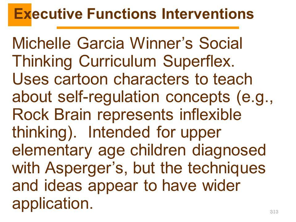 313 Michelle Garcia Winner's Social Thinking Curriculum Superflex. Uses cartoon characters to teach about self-regulation concepts (e.g., Rock Brain r