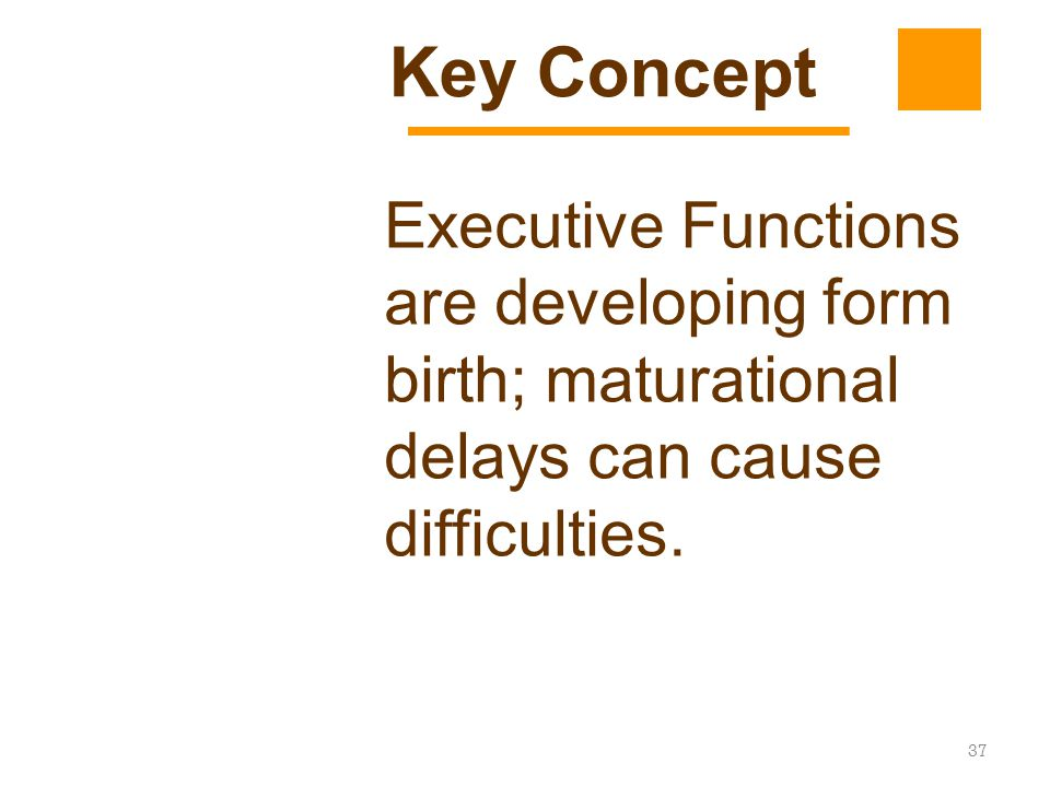 37 Executive Functions are developing form birth; maturational delays can cause difficulties. Key Concept