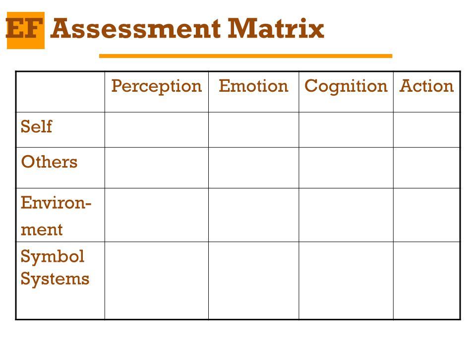 PerceptionEmotionCognitionAction Self Others Environ- ment Symbol Systems EF Assessment Matrix
