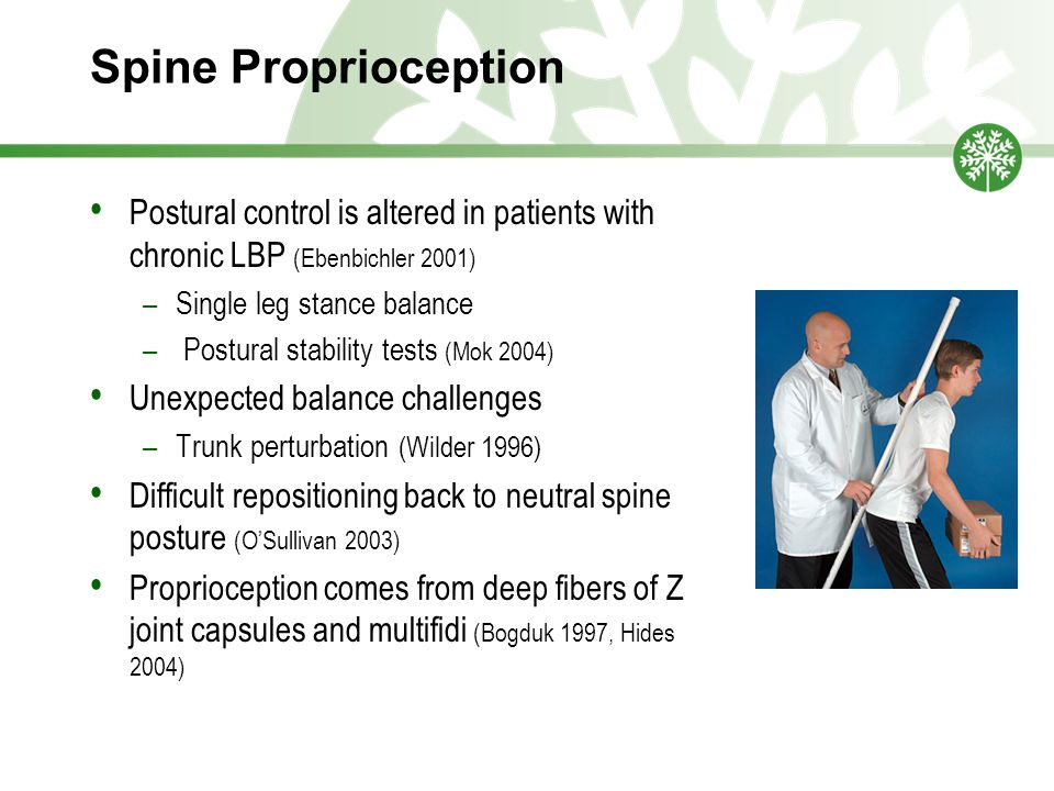 Spine Proprioception Postural control is altered in patients with chronic LBP (Ebenbichler 2001) –Single leg stance balance – Postural stability tests