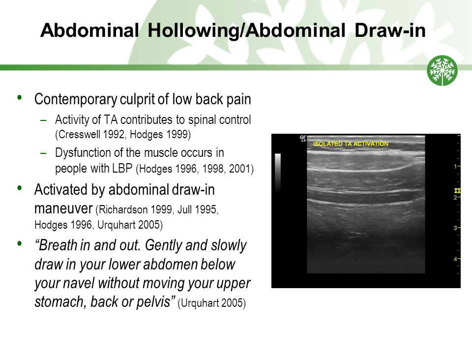 Abdominal Hollowing/Abdominal Draw-in Contemporary culprit of low back pain –Activity of TA contributes to spinal control (Cresswell 1992, Hodges 1999