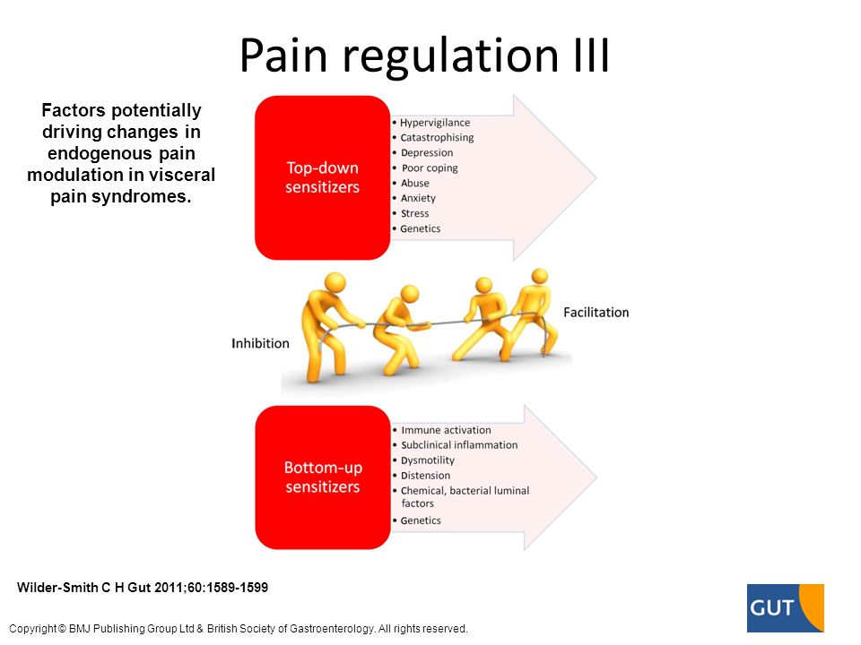 Factors potentially driving changes in endogenous pain modulation in visceral pain syndromes.