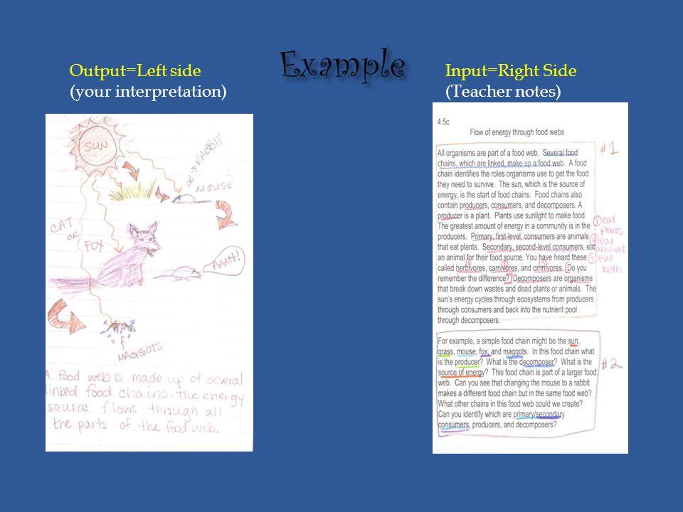 Output=Left side (your interpretation) Input=Right Side (Teacher notes)