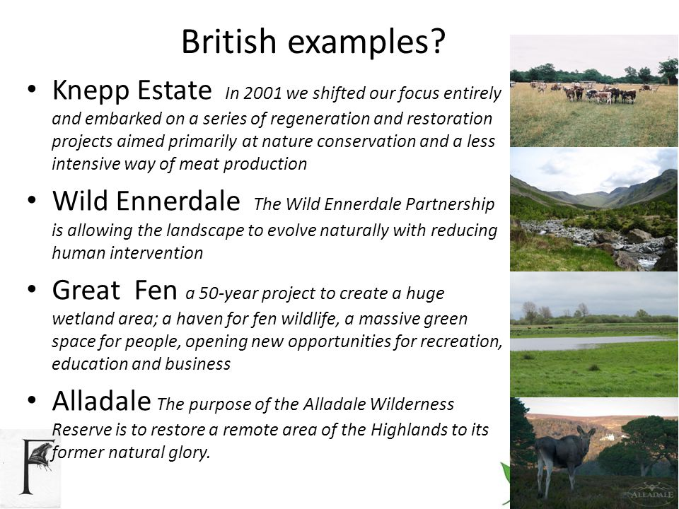 British examples? Knepp Estate In 2001 we shifted our focus entirely and embarked on a series of regeneration and restoration projects aimed primarily