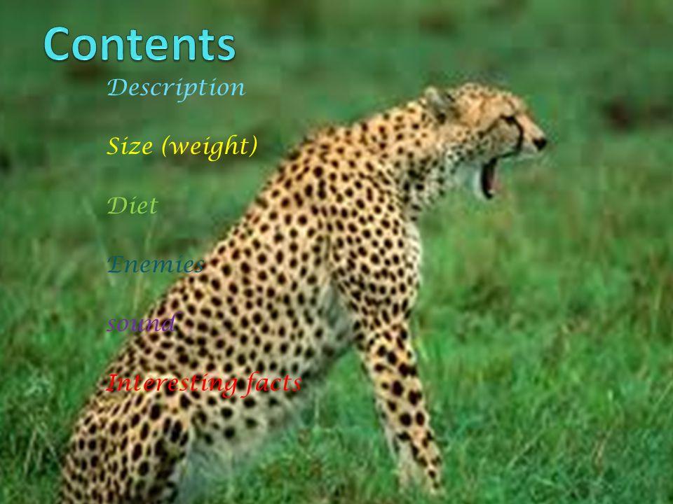Description Size (weight) Diet Enemies sound Interesting facts