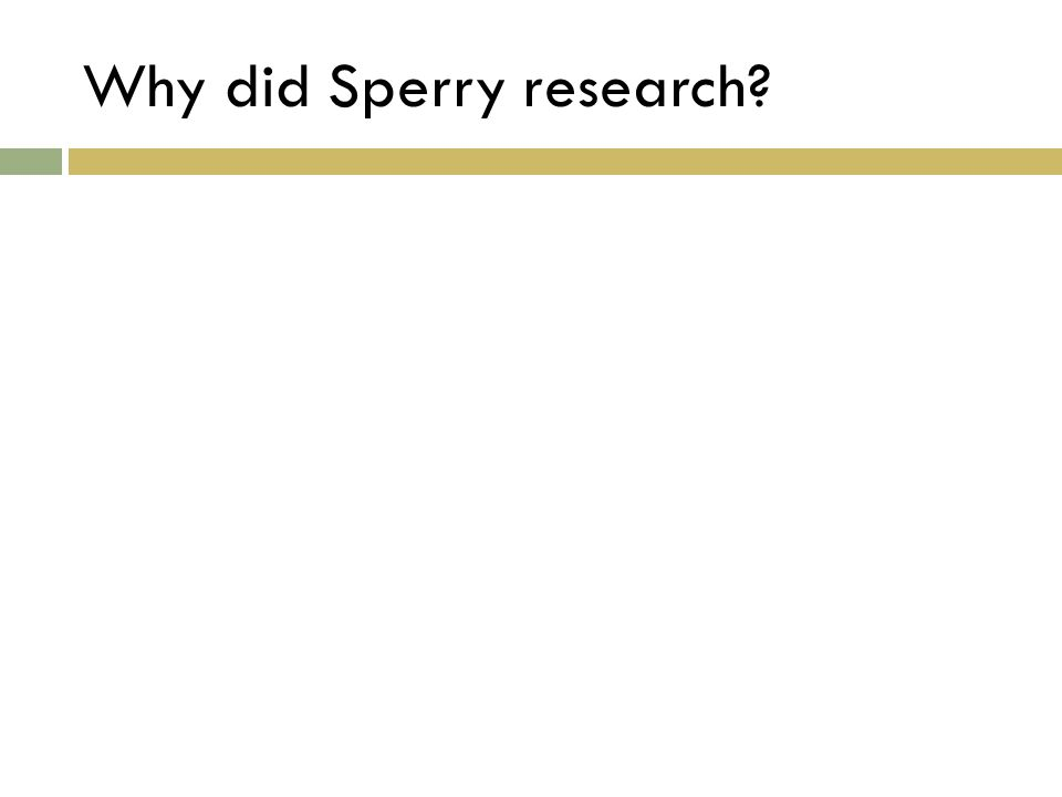Why did Sperry research?