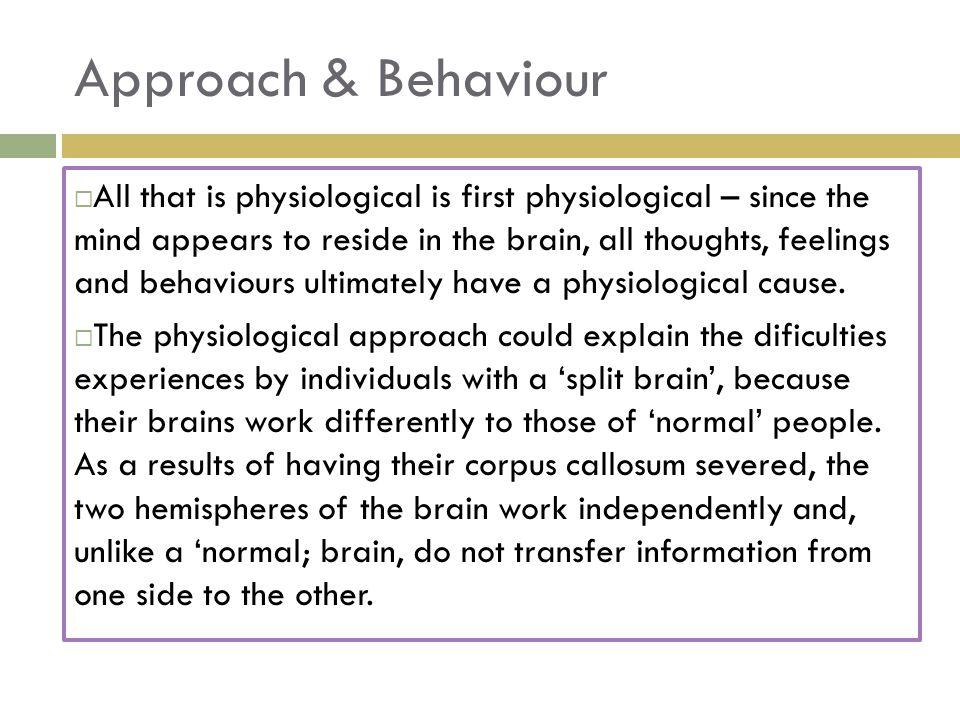 Right Hemisphere Left Hemisphere Corpus Callosum