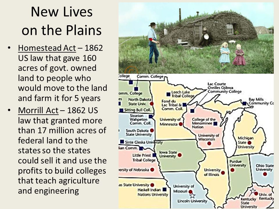 Settling the Plains People moved from all over the nation to farm as land was expensive back east and women could get land under the Homestead Act (#1) Exodusters – Tens of thousands of African- Americans who left the south to avoid discrimination and moved to Kansas and developed farming communities there Immigrants from northern Europe formed many small communities on the Great Plains (#3)