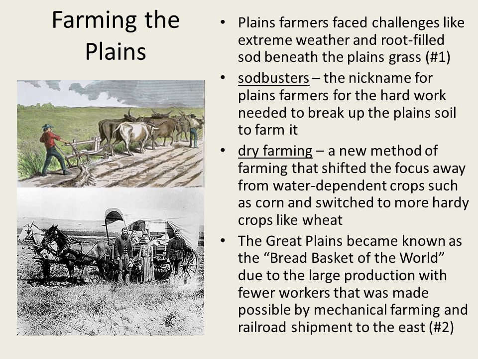 Problems and Innovations Lack of wood for houses – sod houses Lack of wood for fences – barbed wire Lack of water – windmills Thick rooted soil of plains – steel plow by John Deere Hard, labor intensive farm work – reaper (harvests crops) by Cyrus McCormick – thresher (separates the kernel from the stalk of grain)