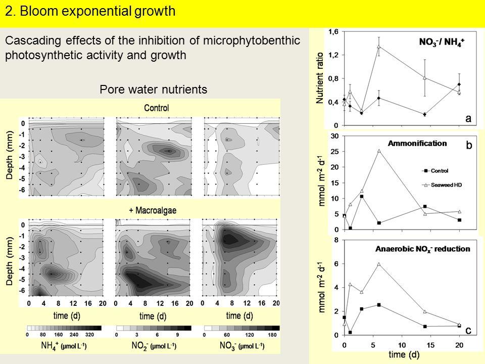 Pore water nutrients 2.