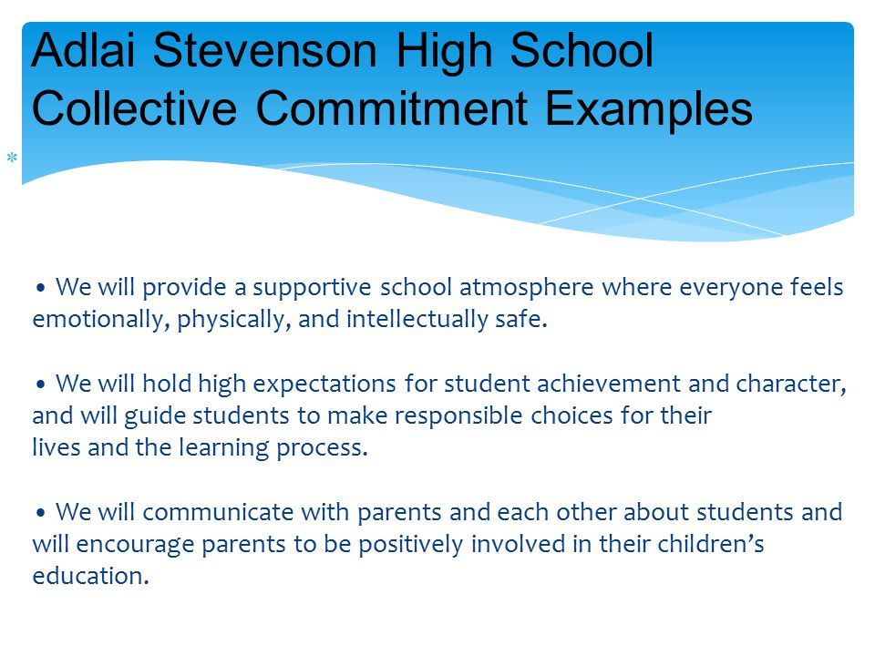  We will provide a supportive school atmosphere where everyone feels emotionally, physically, and intellectually safe.