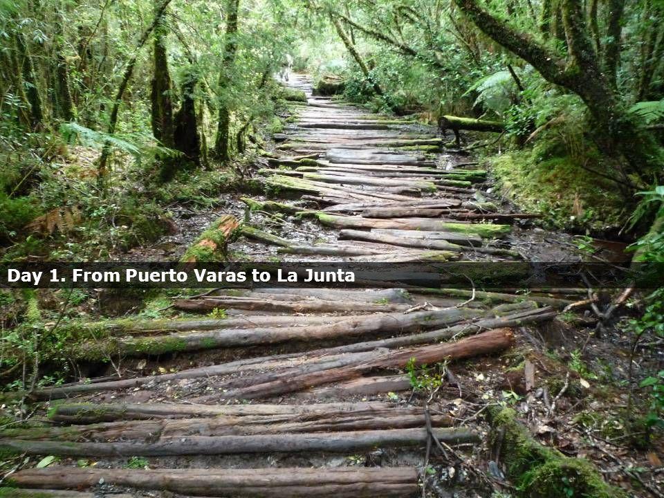 Day 1. From Puerto Varas to La Junta