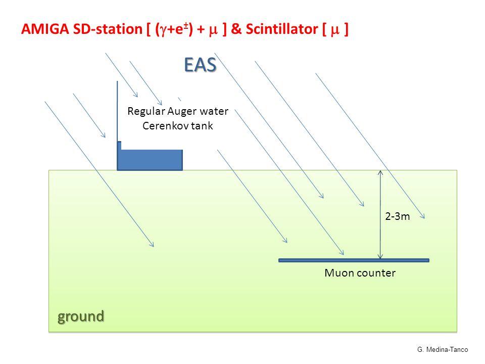 AMIGA SD-station [ (  +e ± ) +  ] & Scintillator [  ] 2-3m Muon counter Regular Auger water Cerenkov tankEASground G. Medina-Tanco