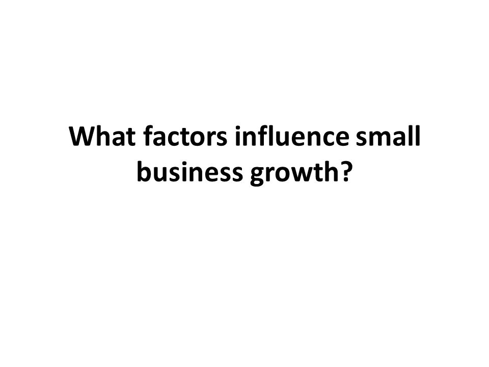 What factors influence small business growth?