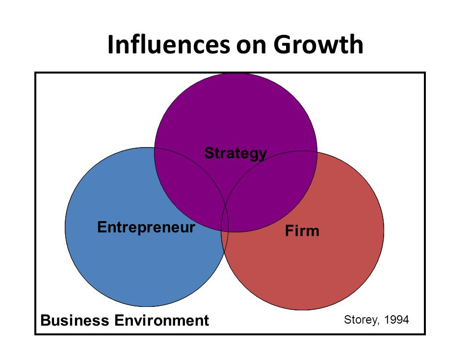 Influences on Growth Entrepreneur Firm Strategy Business Environment Storey, 1994
