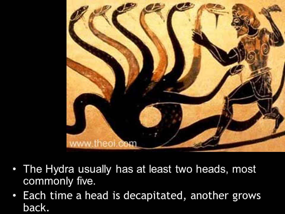 GREEK The Hydra usually has at least two heads, most commonly five.