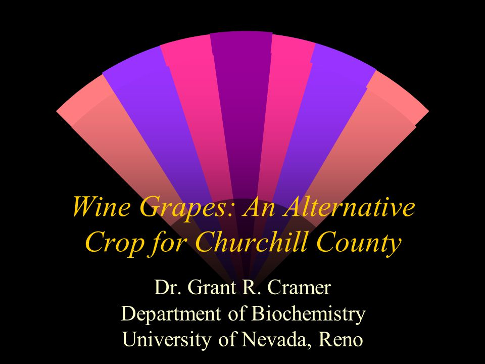 Wine Grapes: An Alternative Crop for Churchill County Dr.