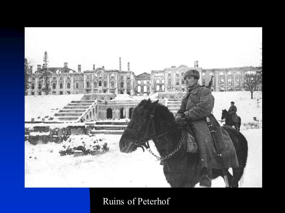 Ruins of Peterhof