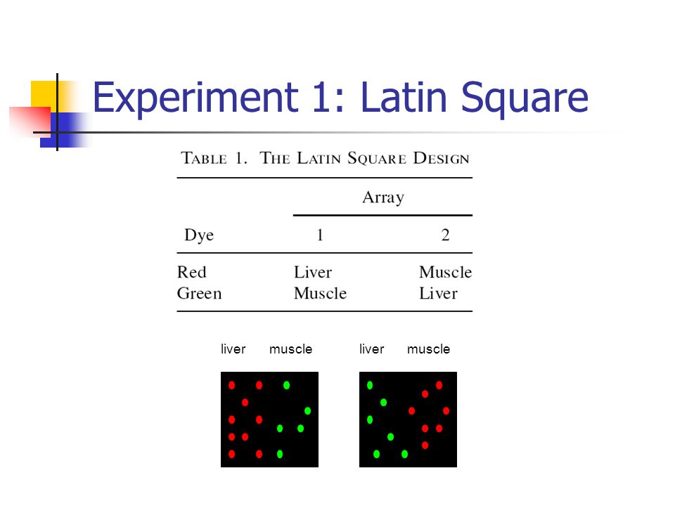 Experiment 1: Latin Square livermuscle liver