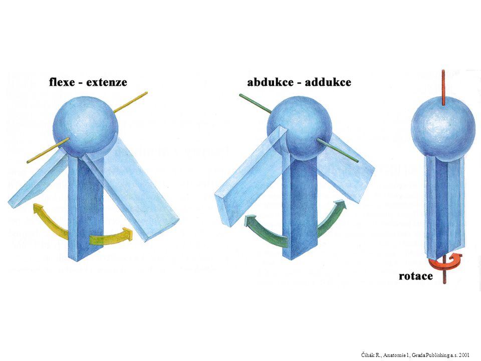 Čihák R., Anatomie 1, Grada Publishing a.s. 2001