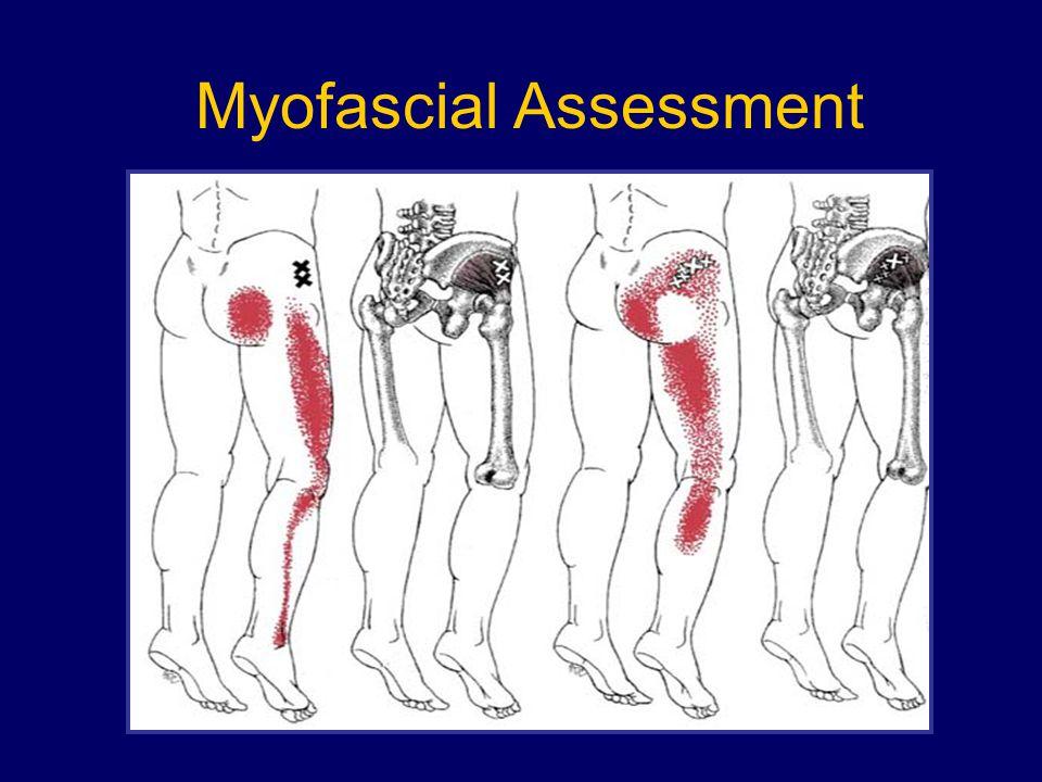 Myofascial Assessment