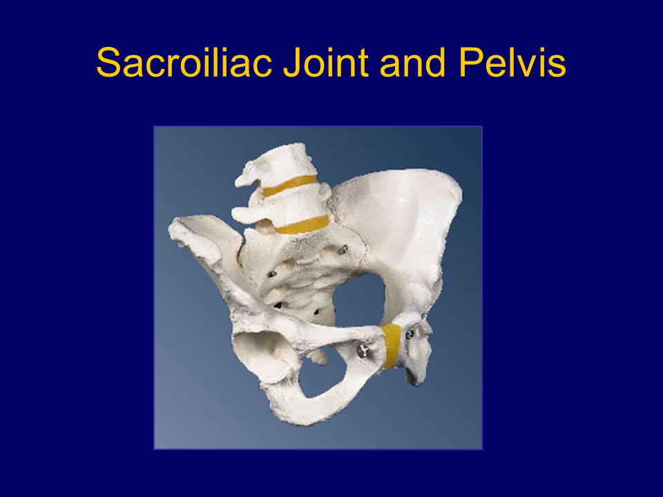 Sacroiliac Joint and Pelvis
