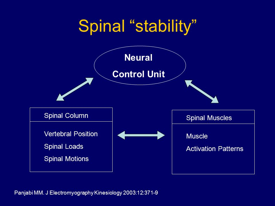 Spinal stability Neural Control Unit Spinal Column Spinal Muscles Vertebral Position Spinal Loads Spinal Motions Muscle Activation Patterns Panjabi MM.