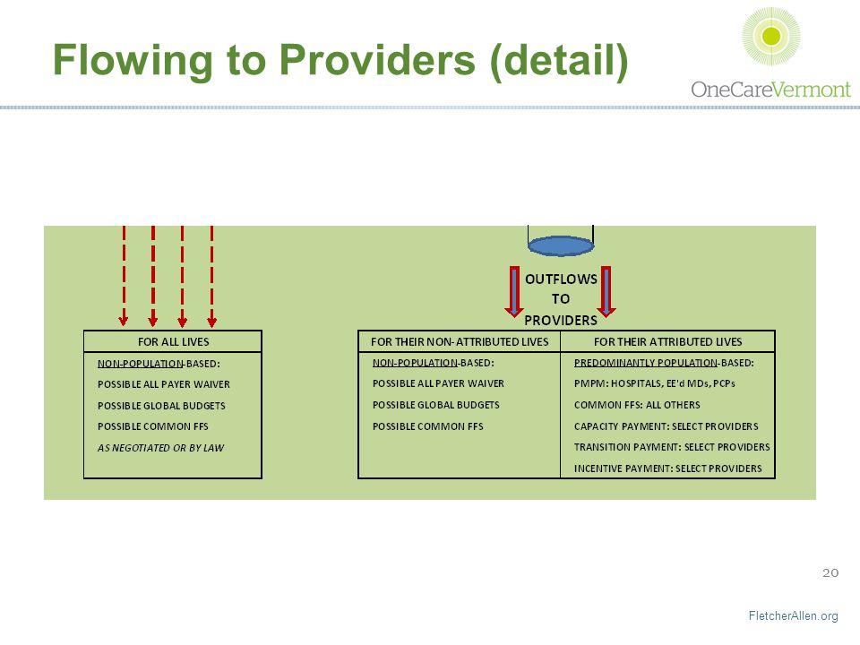 FletcherAllen.org 20 Flowing to Providers (detail)