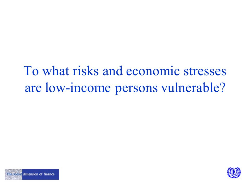 To what risks and economic stresses are low-income persons vulnerable