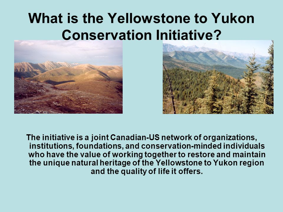 What is the Yellowstone to Yukon Conservation Initiative.