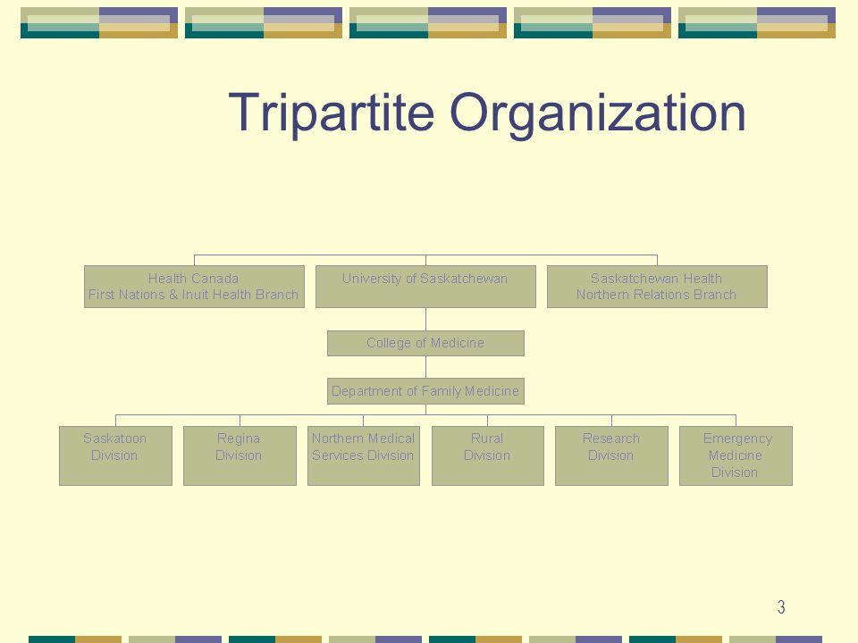3 Tripartite Organization