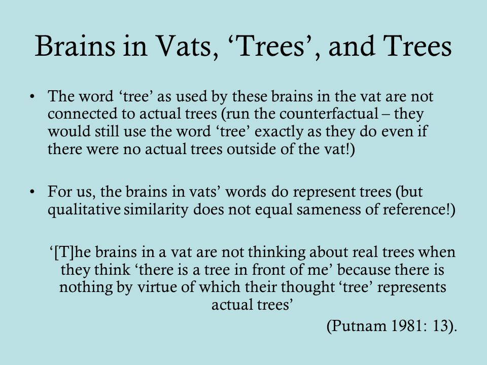 Brains in Vats, 'Trees', and Trees The word 'tree' as used by these brains in the vat are not connected to actual trees (run the counterfactual – they would still use the word 'tree' exactly as they do even if there were no actual trees outside of the vat!) For us, the brains in vats' words do represent trees (but qualitative similarity does not equal sameness of reference!) '[T]he brains in a vat are not thinking about real trees when they think 'there is a tree in front of me' because there is nothing by virtue of which their thought 'tree' represents actual trees' (Putnam 1981: 13).