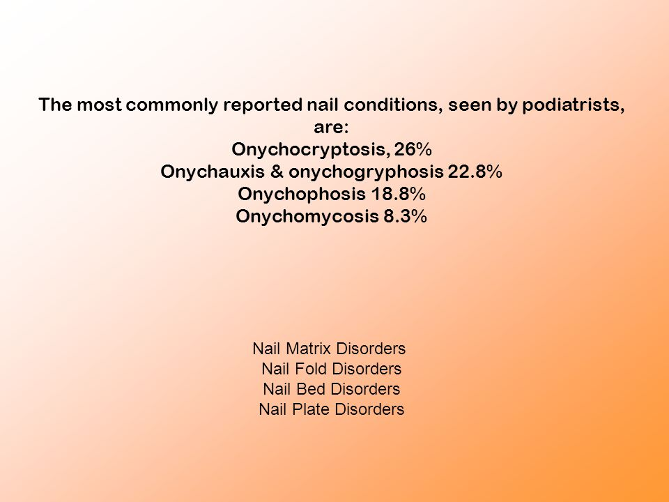 The most commonly reported nail conditions, seen by podiatrists, are: Onychocryptosis, 26% Onychauxis & onychogryphosis 22.8% Onychophosis 18.8% Onych