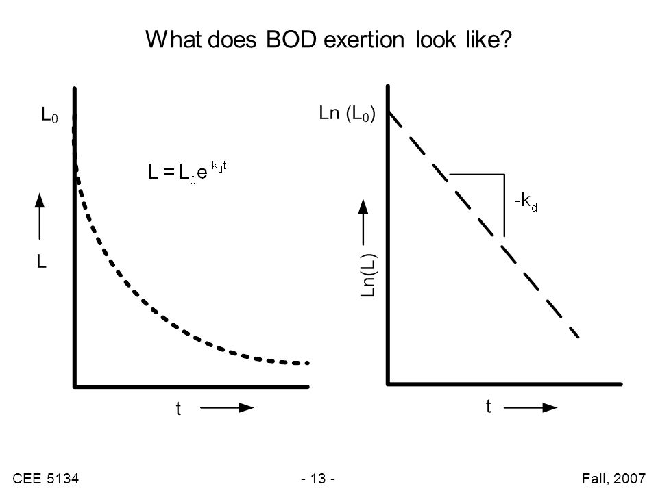 CEE 5134 - 13 - Fall, 2007 What does BOD exertion look like?