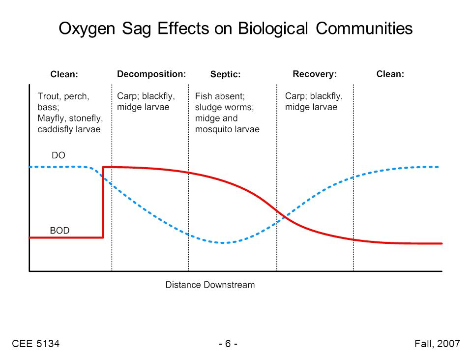 CEE 5134 - 6 - Fall, 2007 Oxygen Sag Effects on Biological Communities