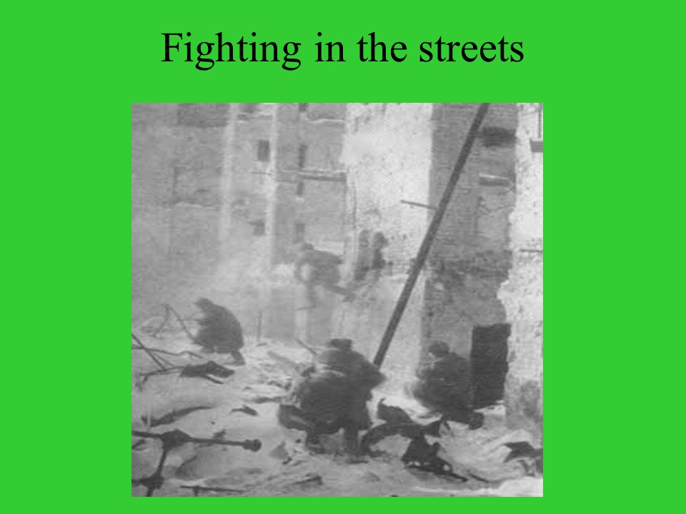 Fighting in the streets