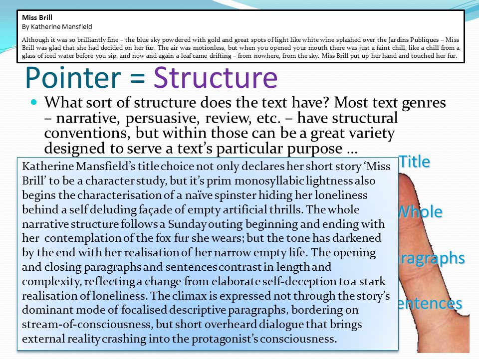 Pointer = Structure What sort of structure does the text have? Most text genres – narrative, persuasive, review, etc. – have structural conventions, b