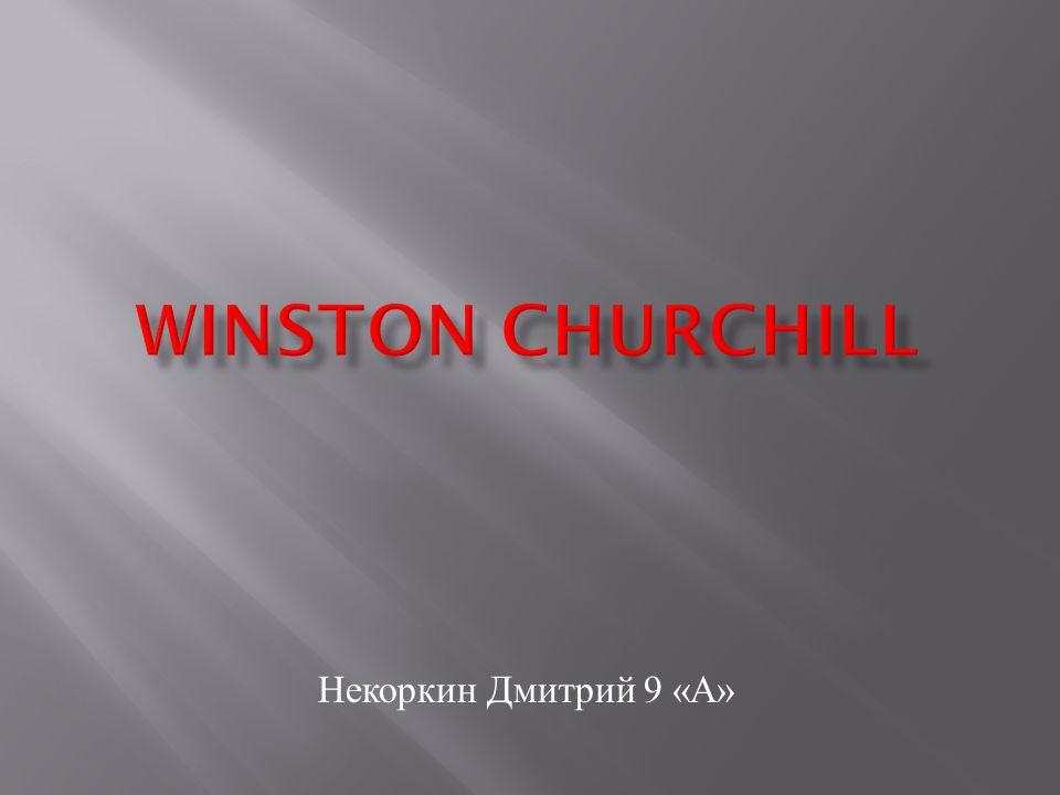 Некоркин Дмитрий 9 « А »