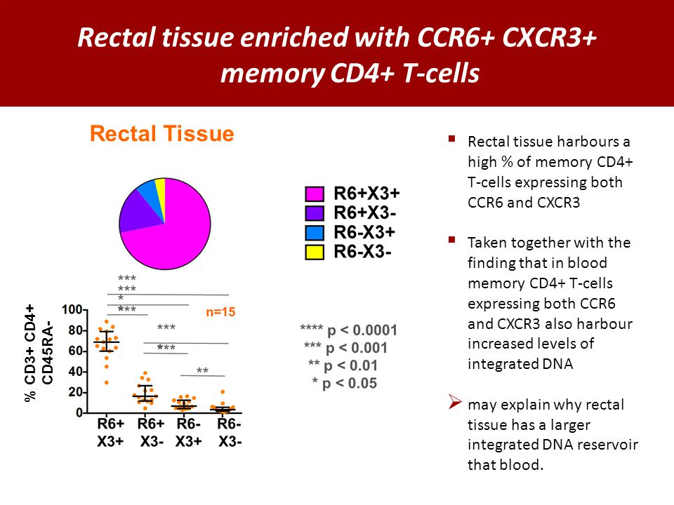 Rectal tissue enriched with CCR6+ CXCR3+ memory CD4+ T-cells Rectal Tissue % CD3+ CD4+ CD45RA-  Rectal tissue harbours a high % of memory CD4+ T-cells expressing both CCR6 and CXCR3  Taken together with the finding that in blood memory CD4+ T-cells expressing both CCR6 and CXCR3 also harbour increased levels of integrated DNA  may explain why rectal tissue has a larger integrated DNA reservoir that blood.