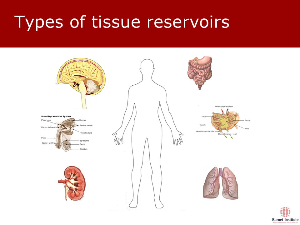 Types of tissue reservoirs