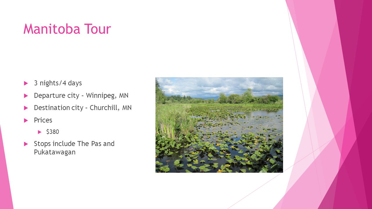 Manitoba Tour  3 nights/4 days  Departure city – Winnipeg, MN  Destination city – Churchill, MN  Prices  $380  Stops include The Pas and Pukatawagan