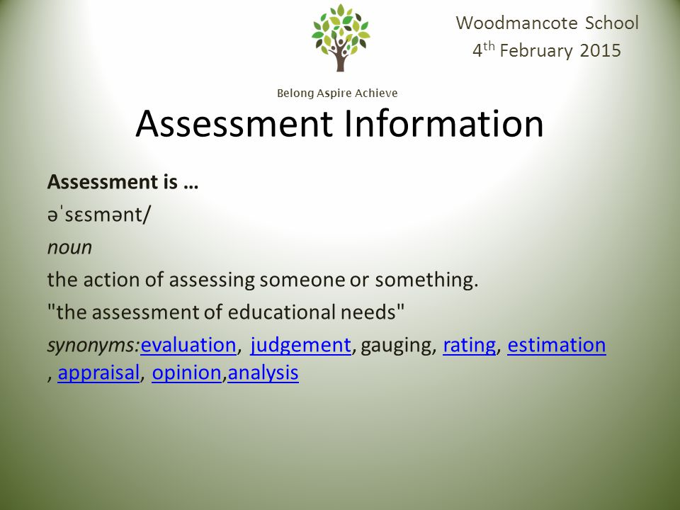 Belong Aspire Achieve Assessment is … assessment əˈsɛsmənt/ noun the action of assessing someone or something.
